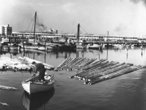Sydhavnen/Fiskerihavnen